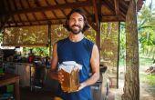 Gewusst wie: starten Sie Ihre erste Mini Kombucha-Brauerei