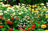 Garduino-automatisierte Gartenarbeit System