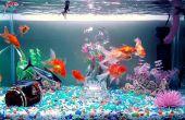 Kristallklares Wasser || Aquarium Power Filter Mod