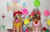 Das Spiel von Candyland kommt zu leben Kostüme