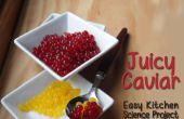 Saftige Kugeln Snack - einfache Küche Science