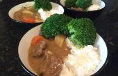 Japanisch Curry-Reis (von vorne keine Paket-Mix)