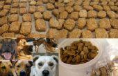 Mutt Cookies / aka Hundekuchen