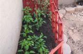 Wie Sie Ihren Garten jährlich für Blumen, Gemüse oder Reben aktualisieren
