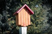 Mauerbiene Haus