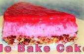 KEIN Backen Himbeer Kuchen, eifreie und ohne Mehl Kuchen