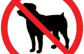 Hunde Ultraschall Repeller (Handheld + Audible Test + Rechargable)