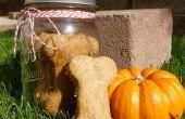 Kürbis & Peanut Butter gewürzt Hund behandelt