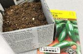 Biologisch abbaubare Zeitung Töpfe