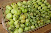 Grüne Tomaten & Speck Marmelade