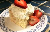 * Betrüger Tres Leches Kuchen: perfekt für Ihren Schatz