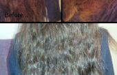 Cocoanut Milch Haarmaske