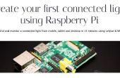 Raspberry Pi. Erstellen Sie Ihre erste verbunden Licht