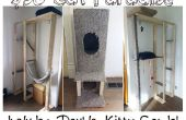 $50 DIY Katze Paradies!