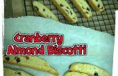 Anfänger Cranberry-Mandel-Biscotti