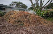 South Florida Boden Gebäude mit Mulch