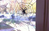 Sugru Spiderweb