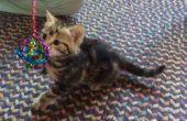 Sparkle-Ball - für Katzen