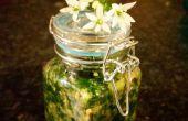 Wilder Knoblauch und Basilikum grob Pesto