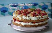 Himalajasalz & Beeren Torte Frühling