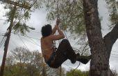 Wie man einen Baum (mit Prussiks!)