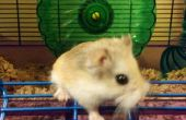 Hamster-Hack: Stummschaltung laute Rad - Recycling!
