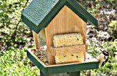 Bauen diese Vogelhäuschen und Chill Out Vogelbeobachtung
