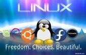 Wie installiere ich ein Linux-Betriebssystem auf Ihrem Chromebook