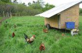 Mobile Hühnerstall mit einigen Automatisierung