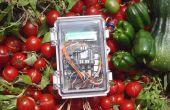 Automatisiertes Gemüseanbau System