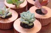 Cupcake konkrete Pflanzer
