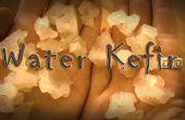 Wie machen Sie authentisch Wasser Kefir