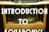 Einführung in Aquaponics