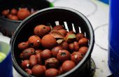 Eine einfache, kleine, billige, Hydrokultur Salat Floß