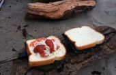 Gewusst wie: Make Berg Kuchen | Lagerfeuer-Sandwiches