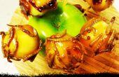 Trick or Treat Karamell Apfel beißt mit kandierten Speck und Mehlwürmer