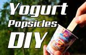 DIY-Joghurt Eis am Stiel