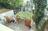 Laubhütte, eine vorübergehende Unterkunft in natürlichen Materialien abgedeckt in der Nähe eine Synagoge gebaut oder Haus und vor allem für die Mahlzeiten während des jüdischen Festivals von Sukkot verwendet.