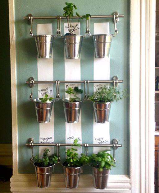 Image Result For Windowsill Vegetable Garden Kit