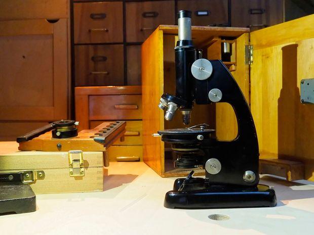 Wiederbelebung einer alten mikroskop gründliche reinigung neue